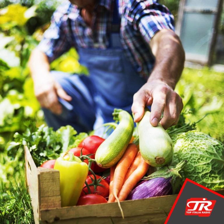 """Michel Martinet (Sindaco del Comune di Gressan): """"Il raccolto in eccedenza degli orti e dei frutteti per le famiglie in emergenza"""""""